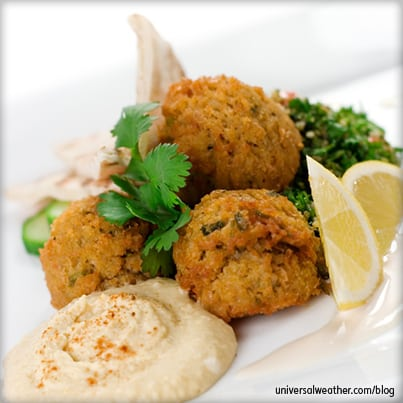 Aviation Catering Tips: Understanding Middle Eastern Cuisine