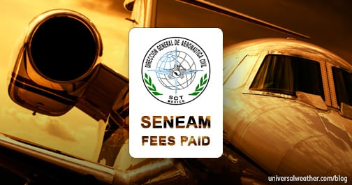 SENEAM Fees for Travel to or over Mexico – Part 2: Dealing with a SENEAM Suspension