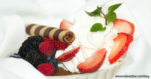 In-flight Catering and Desserts Onboard: Preparation Aloft